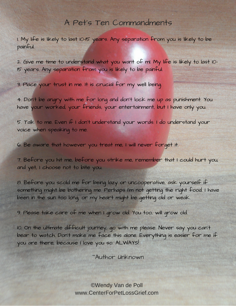 Dont Forget I Love You Poem Of Dragonsfootball17
