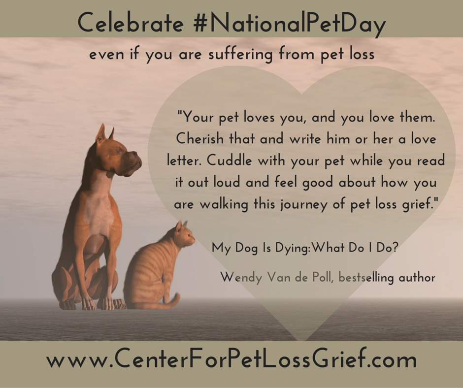 National Pet Day Write A Love Letter To Heal Your Pet