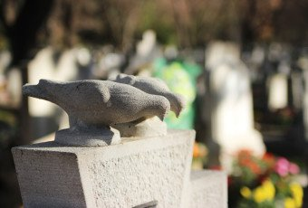 A Pet Funeral to Heal Your Grief