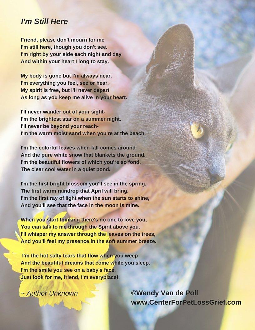Pet Eulogy Poem