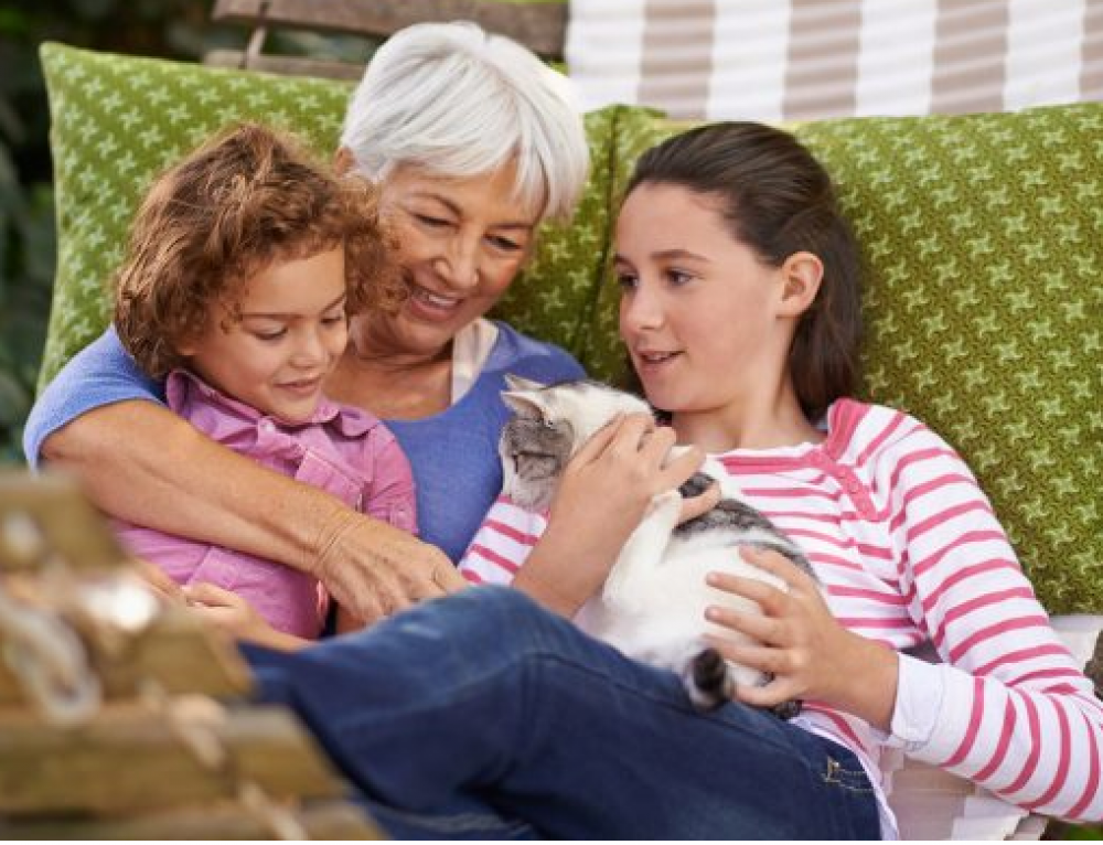 Supporting Grandchildren with Pet Loss