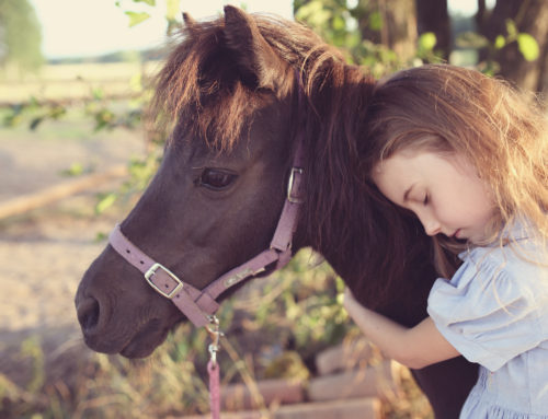 How to Support Kids with Pet Loss Grief